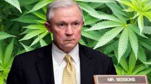 sessions and weed